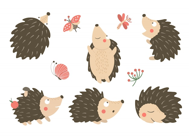 Vektorsatz der flachen lustigen igel der karikaturartflache in verschiedenen posen mit libelle, schmetterling, marienkäferclipart. nette illustration von waldtieren.