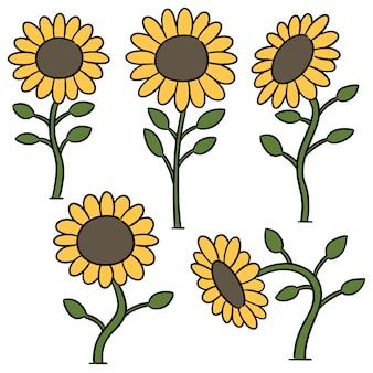 Vektorsatz der sonnenblume