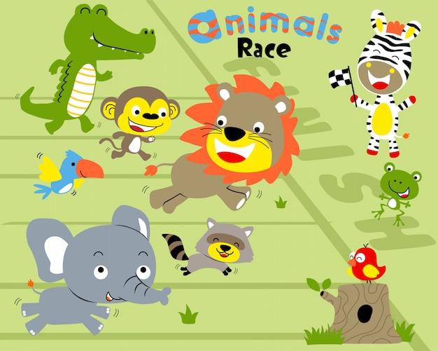 Vektorsatz der tierrennenkarikatur