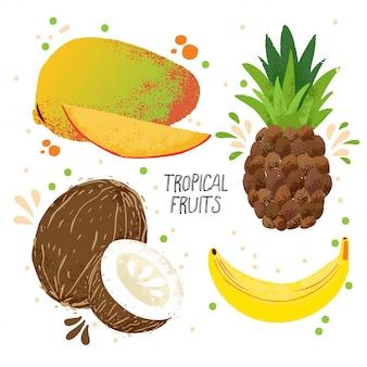 Vektorsatz des handabgehobenen betrages tropische früchte - mango, banane, ananas und kokosnuss lokalisiert auf weißem hintergrund.