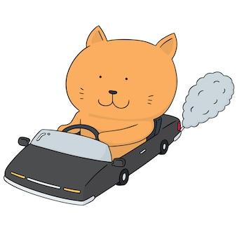Vektorsatz katze, die auto antreibt