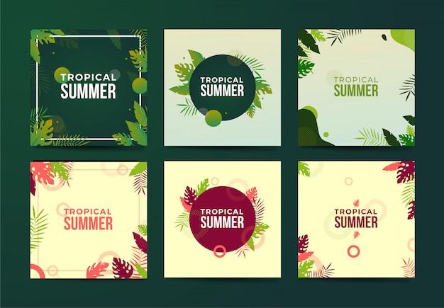 Vektorsatz schöner sommerposter und -fahnen mit laub