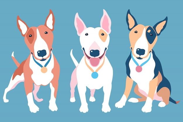 Vektorsatz von bullterrierhunden verschiedener typischer farben