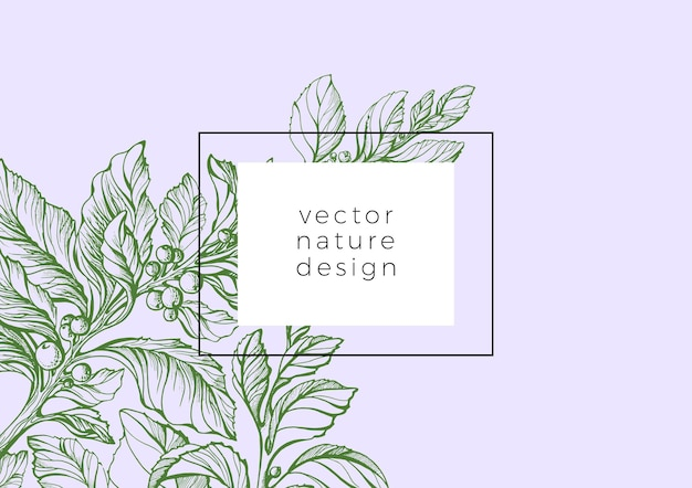 Vektorschablone der skizze mate zweig blumenillustration rahmendesign natur