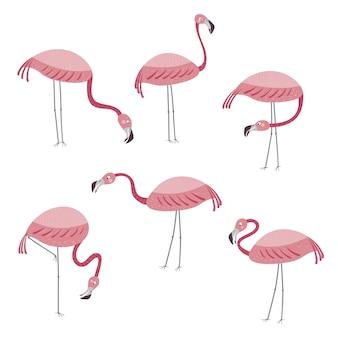 Vektorset mit sechs flamingos flamingos stehen isoliert auf weißem hintergrund