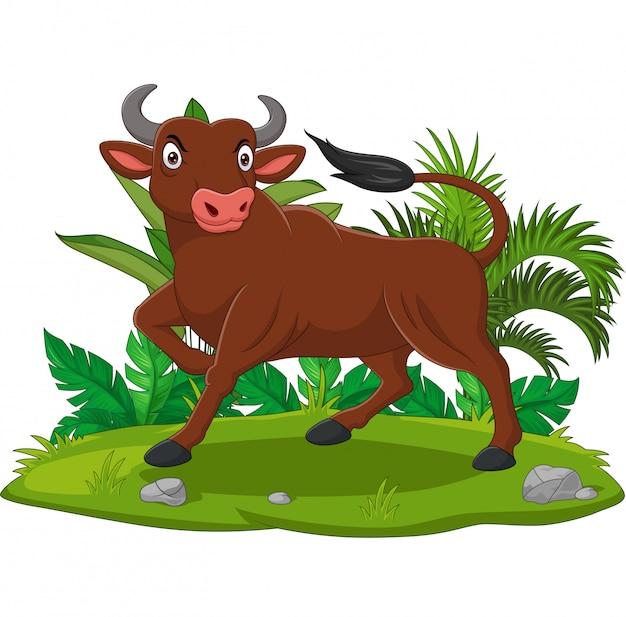 Verärgerter stier der karikatur im gras
