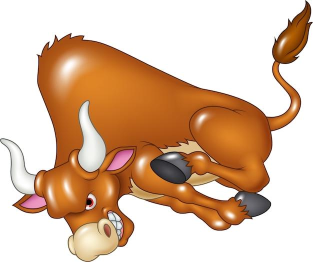 Verärgerter stier greift an lokalisiert auf weißem hintergrund an