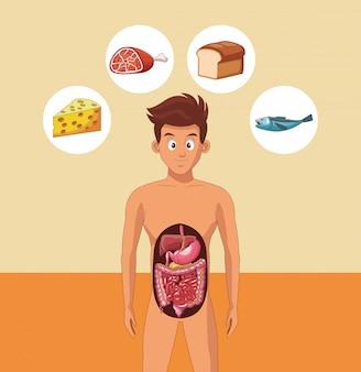 Verdauungssystem des jungen mannes