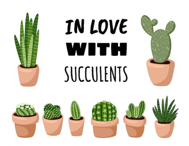 Verliebt in sukkulenten postkarte