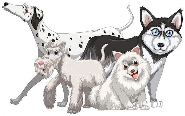 Verschiedene art von niedlichen hunden illustration