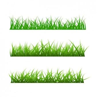Verschiedene arten von gras