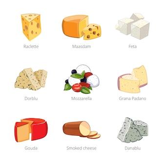 Verschiedene arten von käse im cartoon-vektor-stil. mozzarella und raclette, maasdam und feta, dorblu und grano padano, danablu illustration