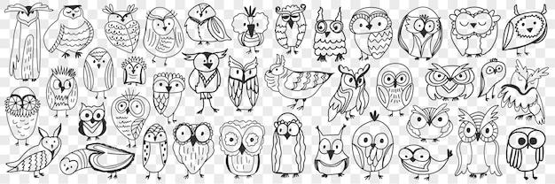 Verschiedene eulen vögel doodle set. sammlung von handgezeichneten niedlichen eulen-nachtvögeln verschiedener formen und größen, die gesichter lokalisiert zeigen.