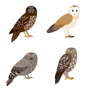 Verschiedene eulenset. cartoon schöner wald fliegender charakter der ornithologie, nachtvögel mit braunen federn, vektorillustration von eulen einzeln auf weißem hintergrund