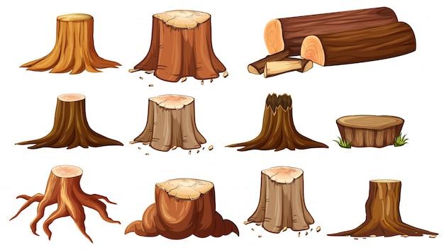 Verschiedene formen von stumpfbäumen