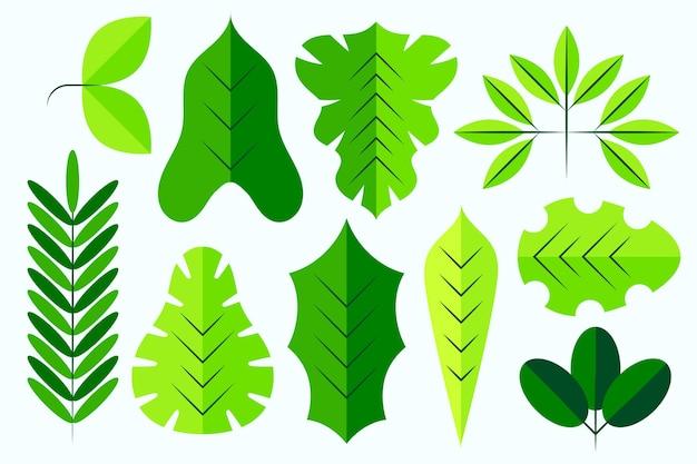 Verschiedene grüne blätter flaches design