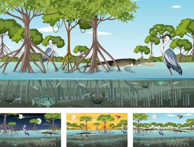 Verschiedene mangrovenwaldlandschaftsszenen mit tieren und pflanzen