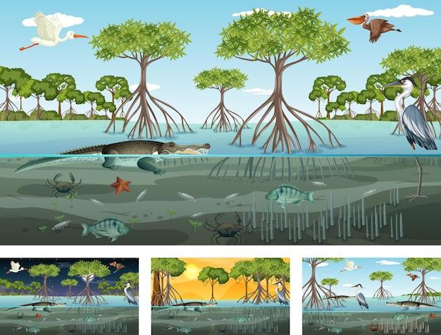 Verschiedene mangrovenwaldlandschaftsszenen mit tieren