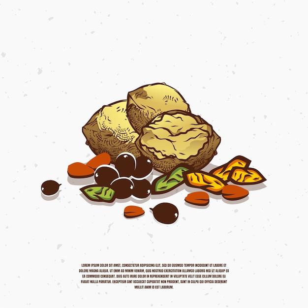 Verschiedene nüsse illustration premium