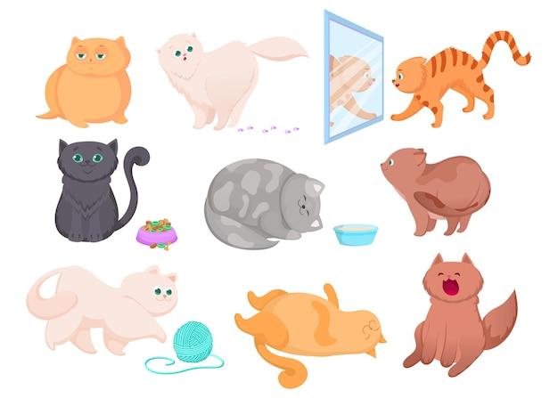 Verschiedene rassen von niedlichen kätzchen illustrationen set