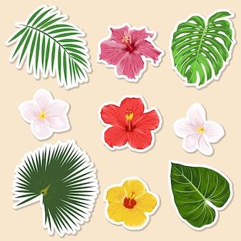Verschiedene tropische pflanzen - blumen und blätter - papieraufkleber und symbolsatz.