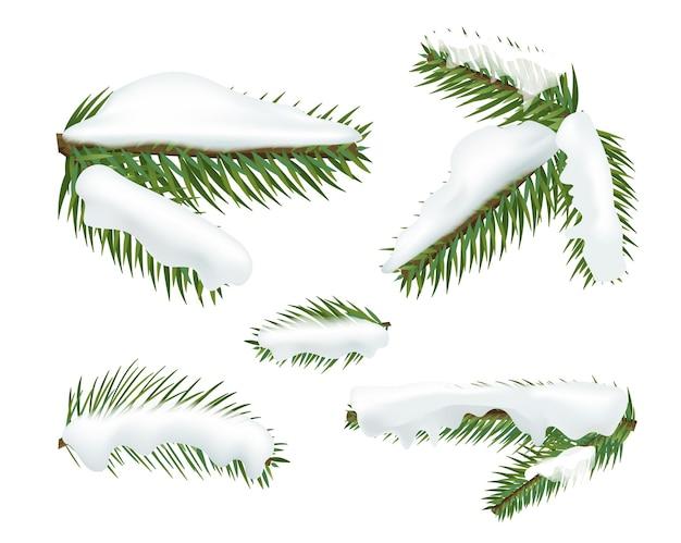 Verschiedene weihnachtsbaumzweige mit schneekappen. weihnachtselemente baum clipart