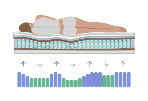 Verteilung der wirbelsäulenbelastung beim schlafen realistische darstellung