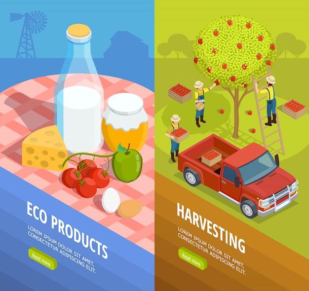 Vertikale isometrische farm banner set