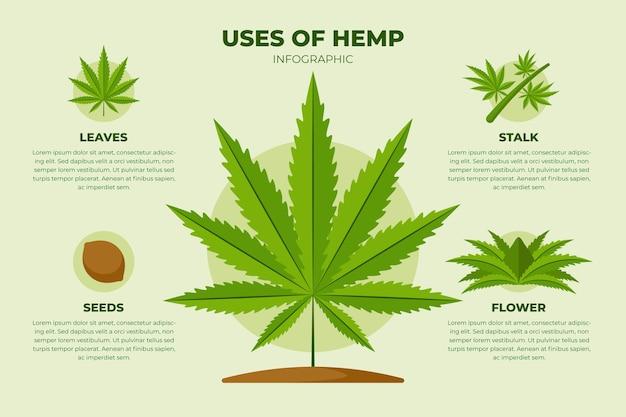 Verwendung der hanf-infografik-vorlage