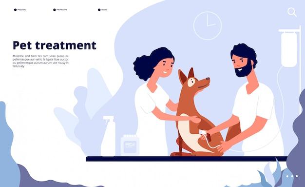 Veterinärlandung. tierarzt behandelt haustier in der klinik. behandlung, beratung und pflege für haustiere website-konzept