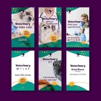 Veterinärmedizinische social-media-geschichten
