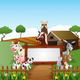 Vieh mit einem leeren Zeichenholz