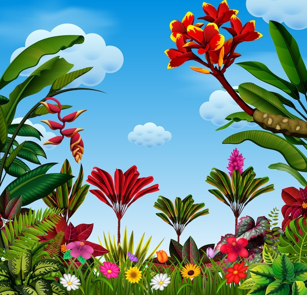 Viele blätter- und blütenvarianten