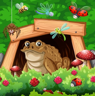 Viele insekten im garten