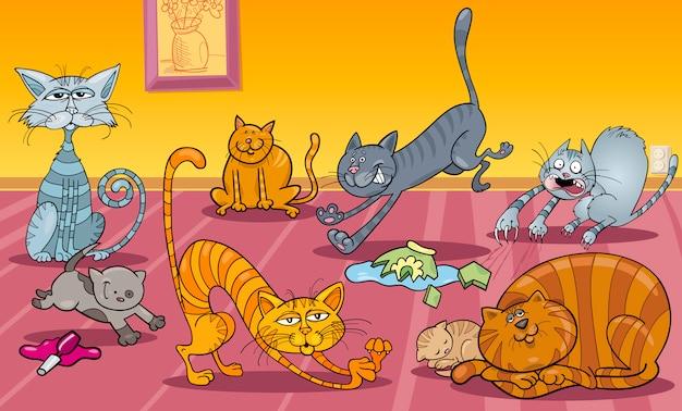 Viele katzen zu hause