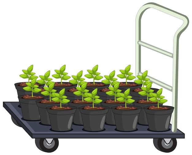 Viele pflanzentöpfe auf gartenwagen isoliert