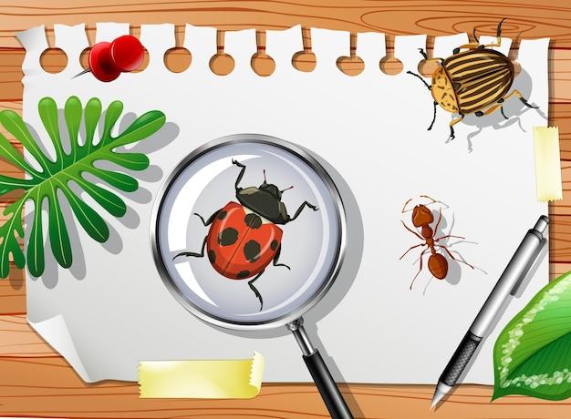 Viele verschiedene insekten auf dem tisch hautnah