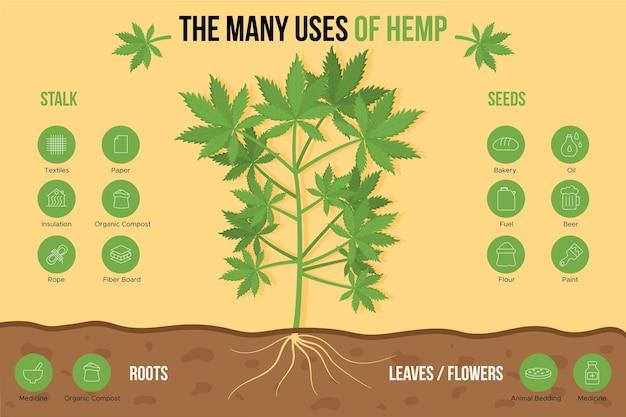Viele verwendungen und vorteile von cannabishanf