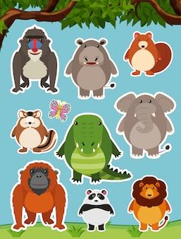 Viele wilde tiere auf dem gebiet