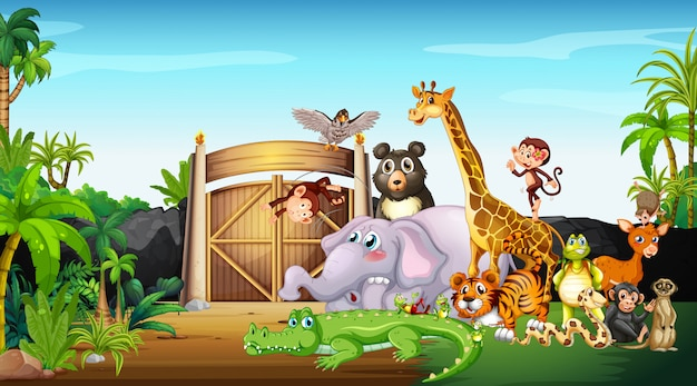 Viele wilde tiere im park