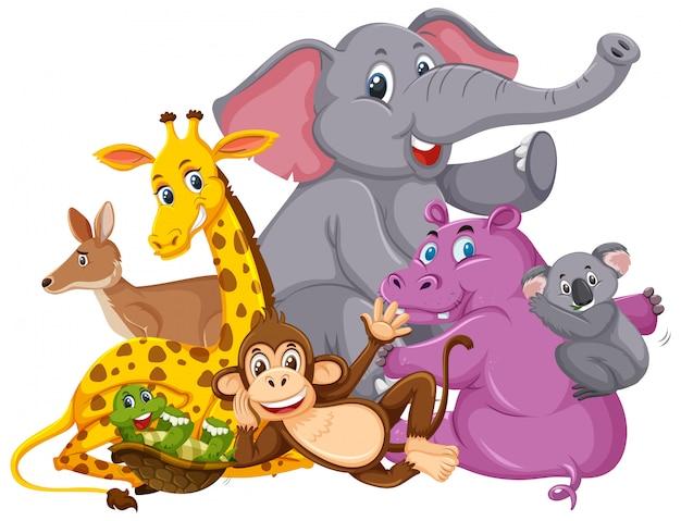 Viele wilde tiere lächeln