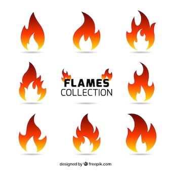 Vielfalt von neun farbigen flammen