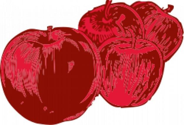 Vier äpfel