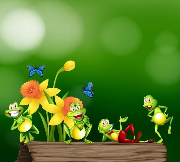 Vier frösche, die auf hölzernem klotz stehen