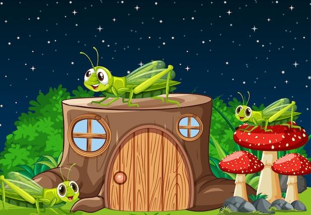 Vier grashüpfer, die in der gartenszene nachts mit stumpfhaus leben