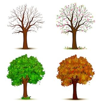Vier jahreszeiten bäume