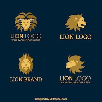 Vier löwenlogo, flacher stil