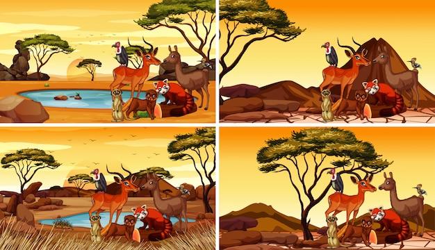 Vier szenen mit vielen tieren auf dem feld