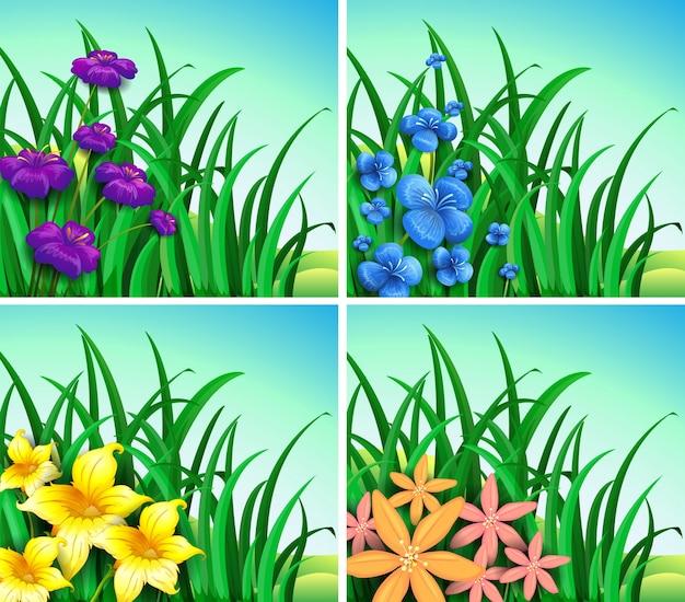 Vier szenen von blumen und gras illustration