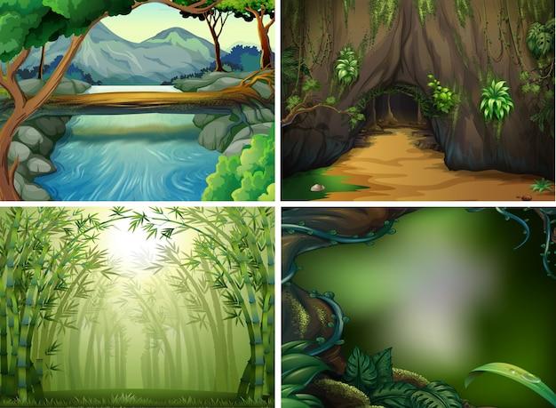 Vier verschiedene waldszenen